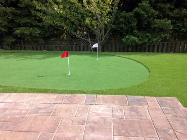 Artificial Grass Photos: Artificial Grass Carpet Delhi, California Putting Green Turf, Backyard