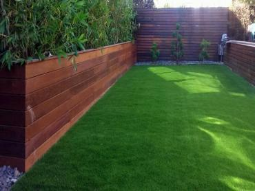 Artificial Grass Carpet Stevinson, California Garden Ideas, Backyard Design artificial grass