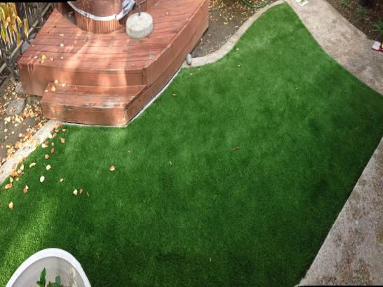 Artificial Grass Photos: Artificial Grass Installation Planada, California Roof Top, Backyard Ideas