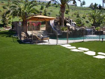 Artificial Lawn South Dos Palos, California Sports Turf artificial grass