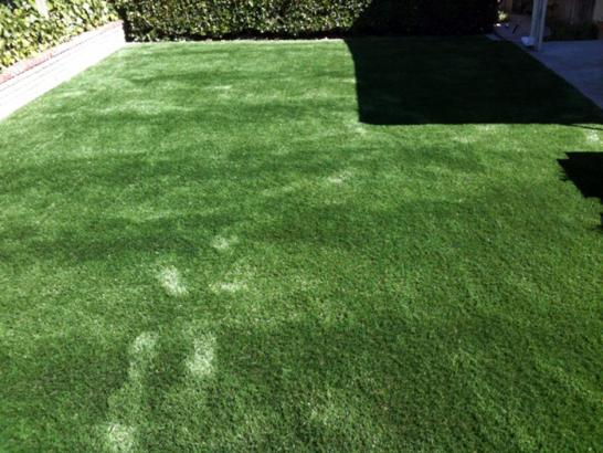 Artificial Grass Photos: Artificial Turf Cost Winton, California Backyard Playground, Small Backyard Ideas