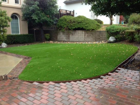 Artificial Grass Photos: Artificial Turf Stevinson, California Lawn And Landscape, Small Front Yard Landscaping