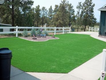 Artificial Grass Photos: Best Artificial Grass Bear Creek, California Gardeners, Front Yard Landscape Ideas