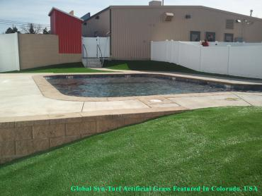 Artificial Grass Photos: Best Artificial Grass Volta, California Backyard Playground, Above Ground Swimming Pool
