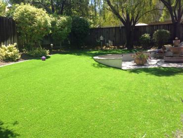 Artificial Grass Photos: Best Artificial Grass Volta, California Landscape Design, Front Yard Design