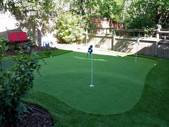 Artificial Grass Photos: Faux Grass Snelling, California Lawns, Backyard Ideas
