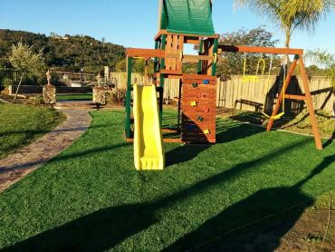 Green Lawn Livingston, California Backyard Playground, Backyards artificial grass