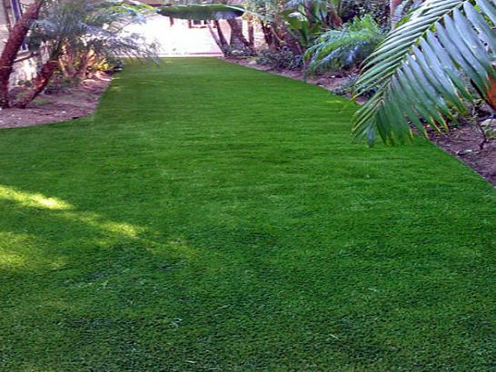 Artificial Grass Photos: How To Install Artificial Grass Le Grand, California Design Ideas, Backyard Design