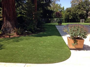 Artificial Grass Photos: Installing Artificial Grass Los Banos, California Cat Playground, Front Yard Landscaping Ideas