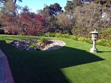 Artificial Grass Photos: Lawn Services South Dos Palos, California Landscaping Business, Backyards