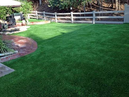 Artificial Grass Photos: Outdoor Carpet Livingston, California Dog Running, Backyard Ideas
