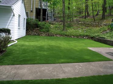 Plastic Grass Atwater, California Landscaping, Front Yard Design artificial grass