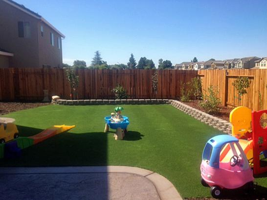 Plastic Grass Dos Palos Y, California Rooftop, Small Backyard Ideas artificial grass