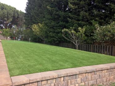 Artificial Grass Photos: Plastic Grass Gustine, California Putting Greens, Backyard Design