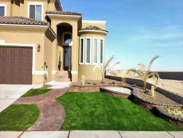 Turf Grass Stevinson, California Landscaping, Front Yard Landscape Ideas artificial grass